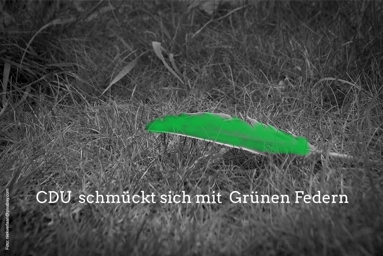 DIE GRÜNEN in Ratingen: Beim Umweltbildungszentrum schmückt sich die CDU mit grünen Federn